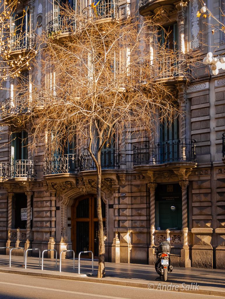 Barcelona, Catalonia, ES  DSC_7092
