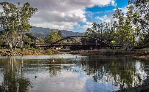 california park ca bridge trees lake water clouds afternoon outdoor ducks losgatos losgatoscreek vasonalakecountypark