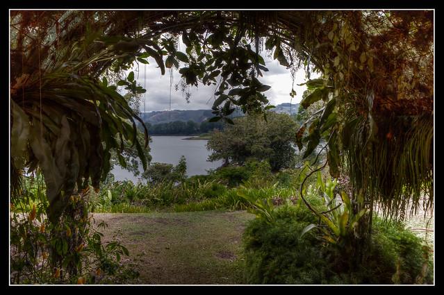 green frame, Costa Rica