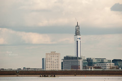 BT tower seen from the Edgbaston Reservoir