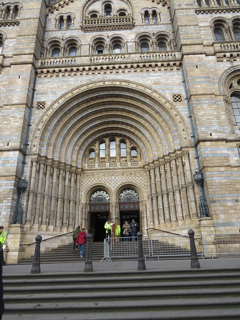 The Natural History Museum (11)