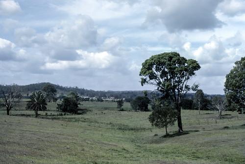 film nature landscape australia slide scan kingston qld queensland kodachrome aus om2 kodachrome64 loganlea southeastqueensland 35mmfilmcamera seqld olympusomsystem 35mmslrcamera zuiko50mmautof14lens canonpixmamg8150