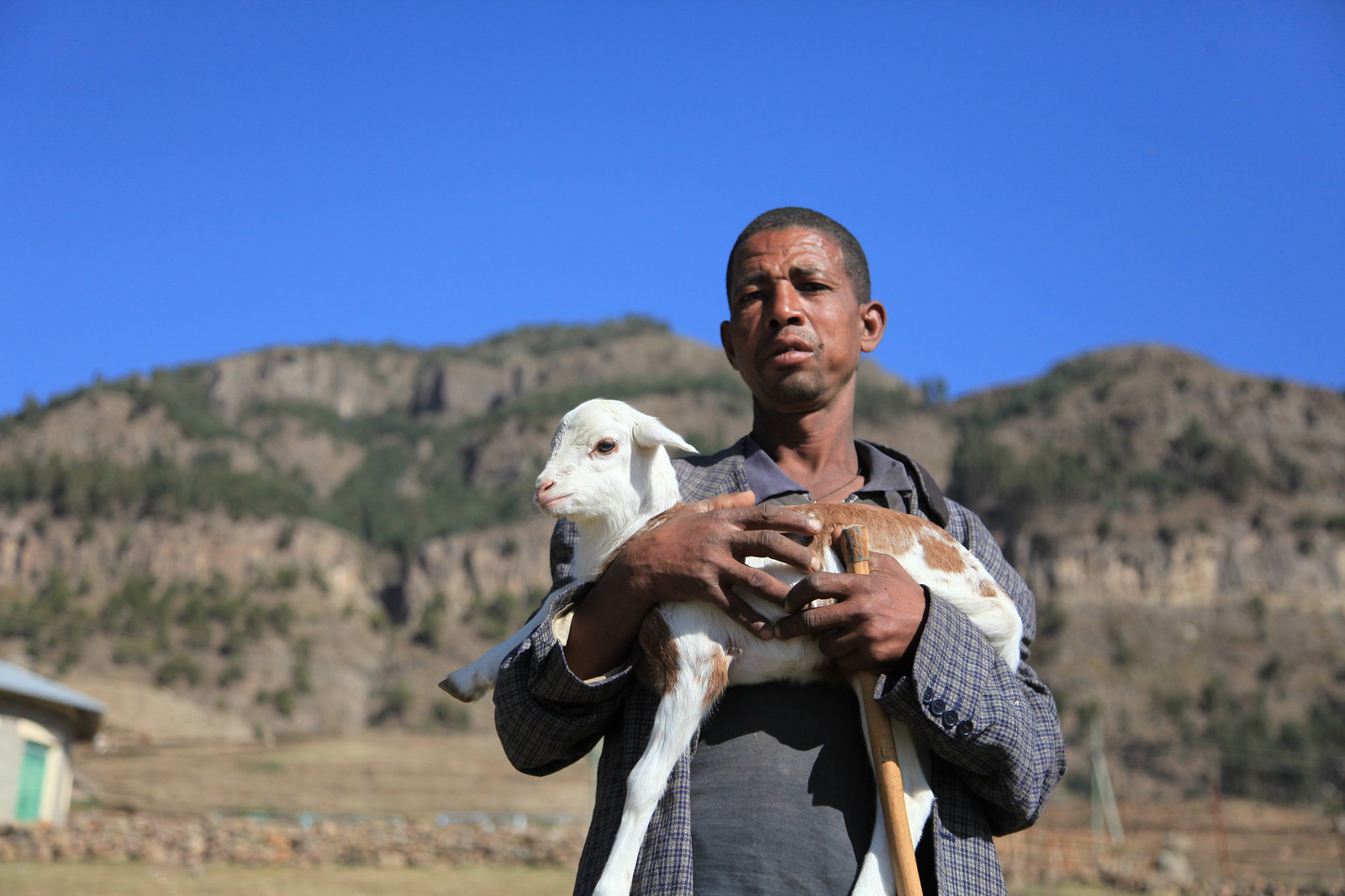 A farmer holding a lamb in Maichew, Tigray