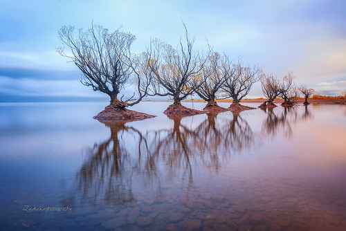 new longexposure morning trees sunset lake reflection sunrise islands south famous zealand willow lowtide wakatipu glenorchy leefilter aorakimount themyst leeproglass zakiesphotography mohdzakishamsudin nikond750