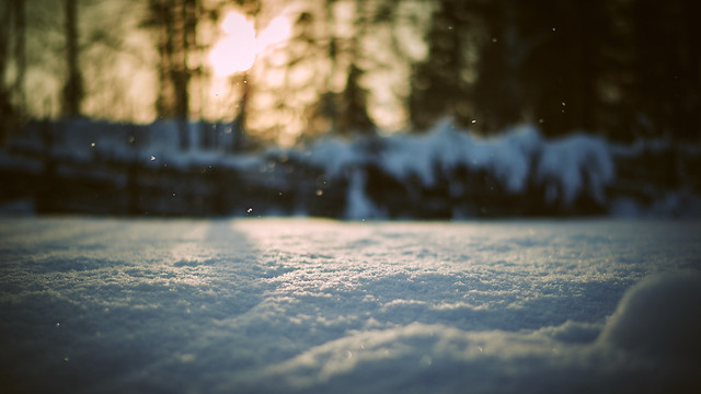 Snowkeh Part Deux