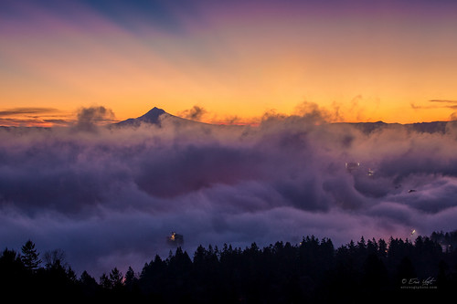 blue trees orange cloud mountain silhouette fog oregon sunrise portland dawn volcano us mt view unitedstates mount hood pdx rays mansion pittock