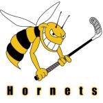Herren I - Hornets Moosseedorf Saison 2015/16