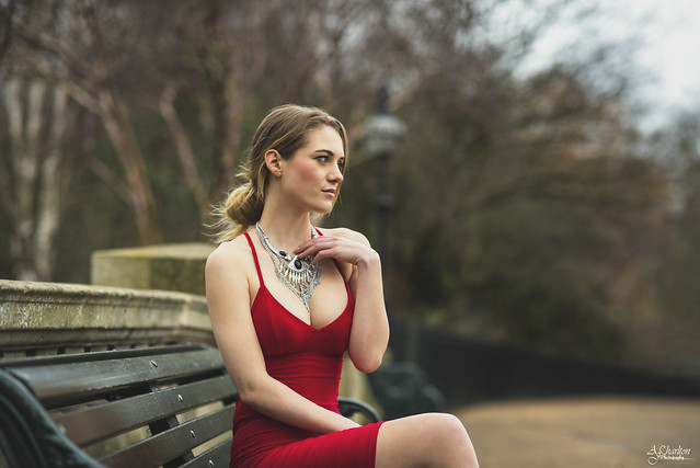 The Lady In Red 2