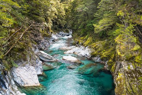 newzealand sunlight river bush rocks shade nz southisland mtaspiringnationalpark bluepools beechforest haastrd makarorarivertributary