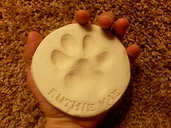 Little Ruthie left her paw print on my heart.