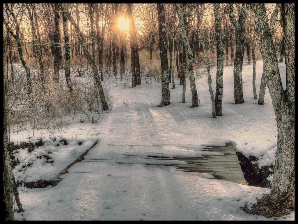 Snow on the Foot Bridge