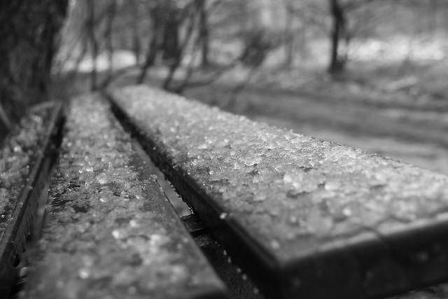 Slush on the Bench