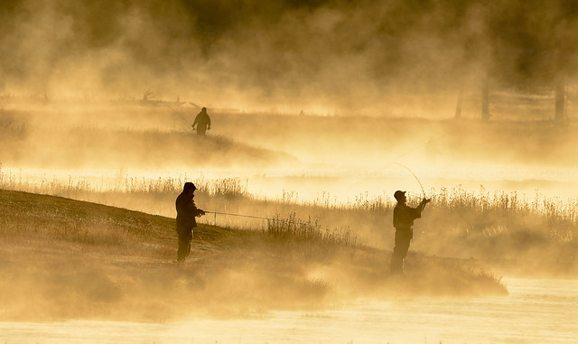 Dawn, Madison River, Yellowstone