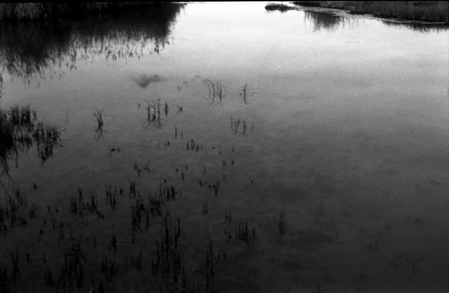 Serie Tarkovski: Иваново детство