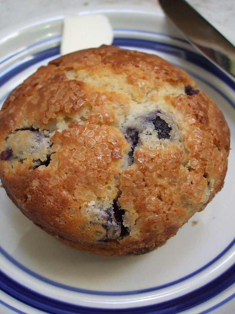 blueberry muffin this morning when i woke up i whipped