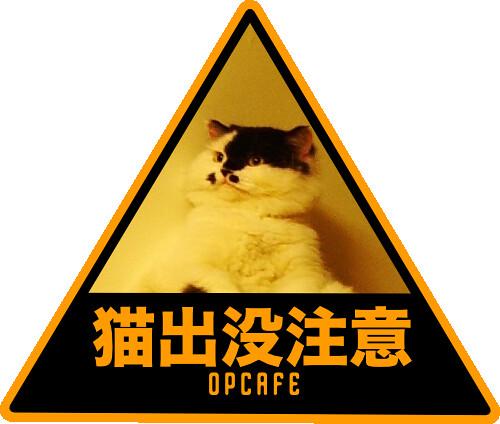 猫出没注意   by gugod