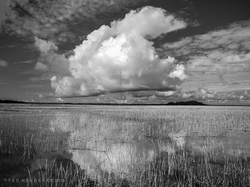 southcarolina sc lowcountry marsh blackandwhite bw hightide kingtide seabrookisland nikond600 hdr rockpaper