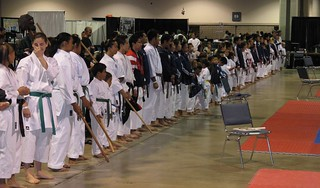 Martial Arts Festival | by Game Time For Life