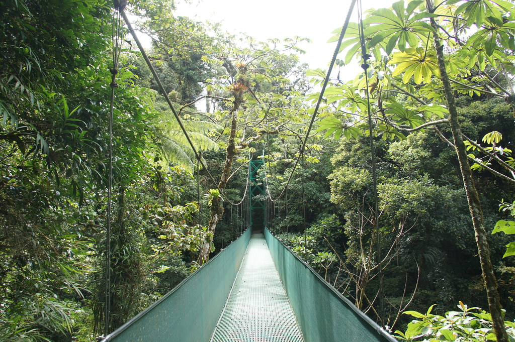 Monteverde, Costa Rica, January 2016