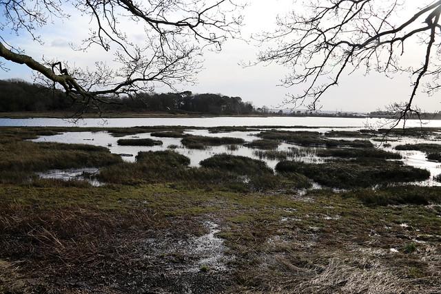 Holes Bay from Upton