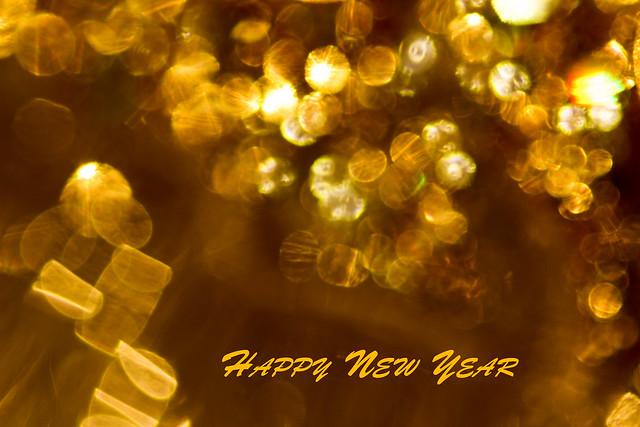 Happy New Year - 215 of 215