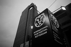 IFFR 2016
