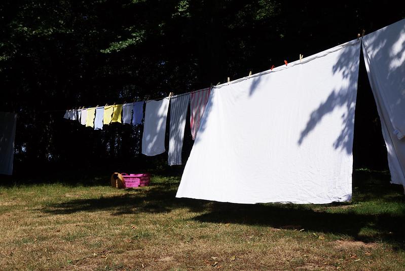 Tjoernbjerg-Have-2014-07-17 (5)