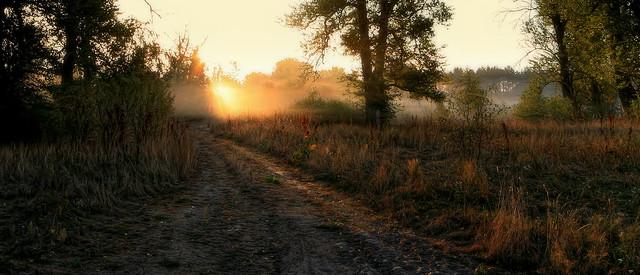 morning (2)