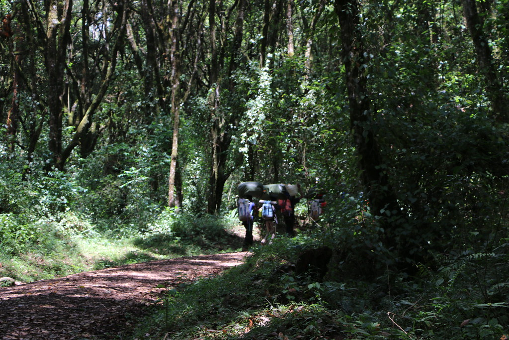 Start of Machame Route to Kilimajaro