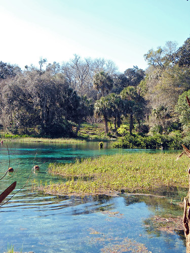 park water river landscape scenery florida marsh dunnellon