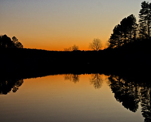 naturaleza nature lago silhouettes northcarolina chapelhill siluetas puestasol rabataller nikond800 sigma24105