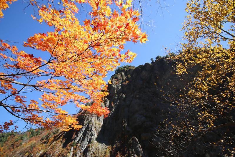 20141025-下ノ廊下-0441.jpg