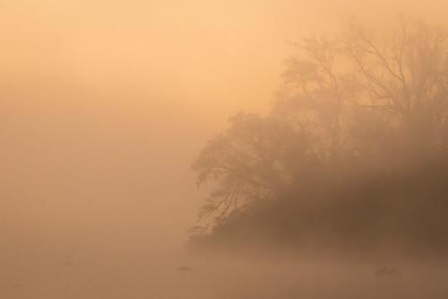 fog sunrise landscape texas pasadena armandbayou kayakphotography gseloff