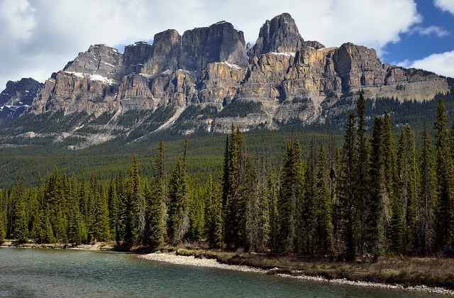 A Setting of a River and Trees to Take in Castle Mountain and Eisenhower Peak (Banff National Park)