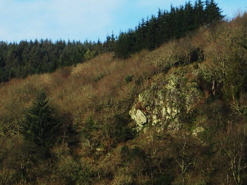 Hyner Rock SX 830819 East Dartmoor | by Bridgemarker Tim