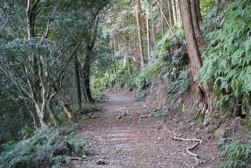熊野古道大辺路、浦神に向かって