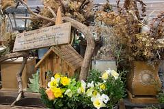 Rumley cottage farm