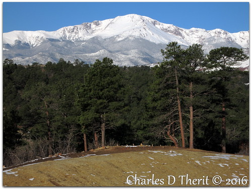 canon colorado coloradosprings explore northamerica usa powershots110 s110 f59 26mm 1500 iso80 landscape mountain rockymountains co 2016 snow pine trees winter photo picture pointandshoot sunrise morning renown famous hill outdoor mountainside best wonderful perfect fabulous great pic image photograph esplora explored