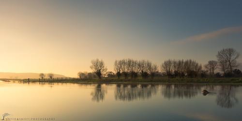 trees england water sunrise colours flood pastel somerset drain kings sedgemoor