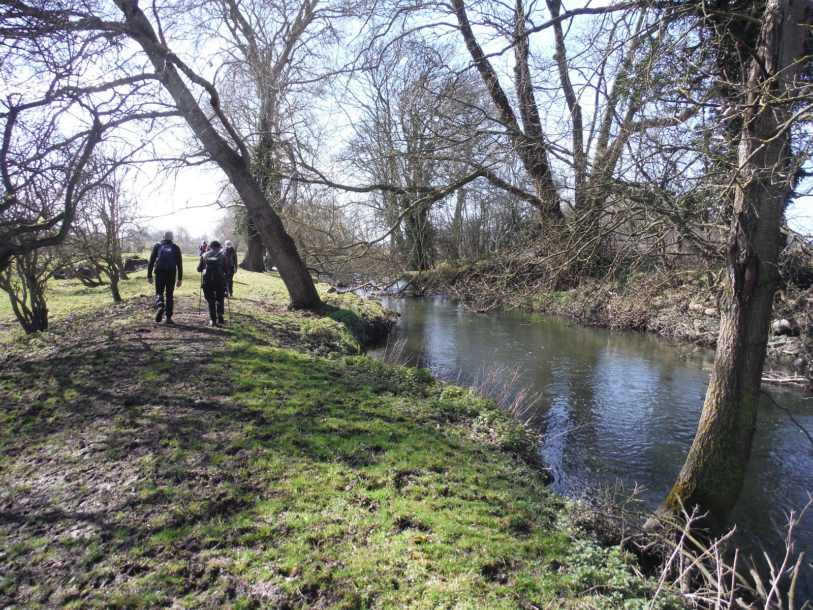Beside the River Thame SWC Walk 193 Haddenham to Aylesbury (via Gibraltar and Ford)