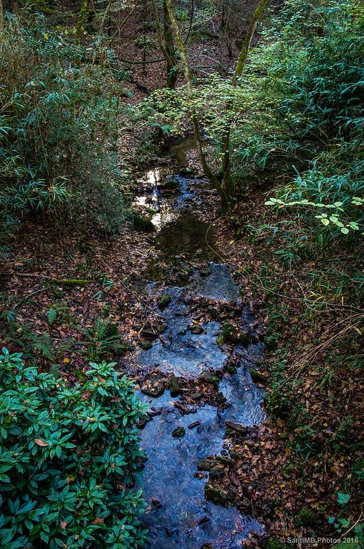La bruja del río