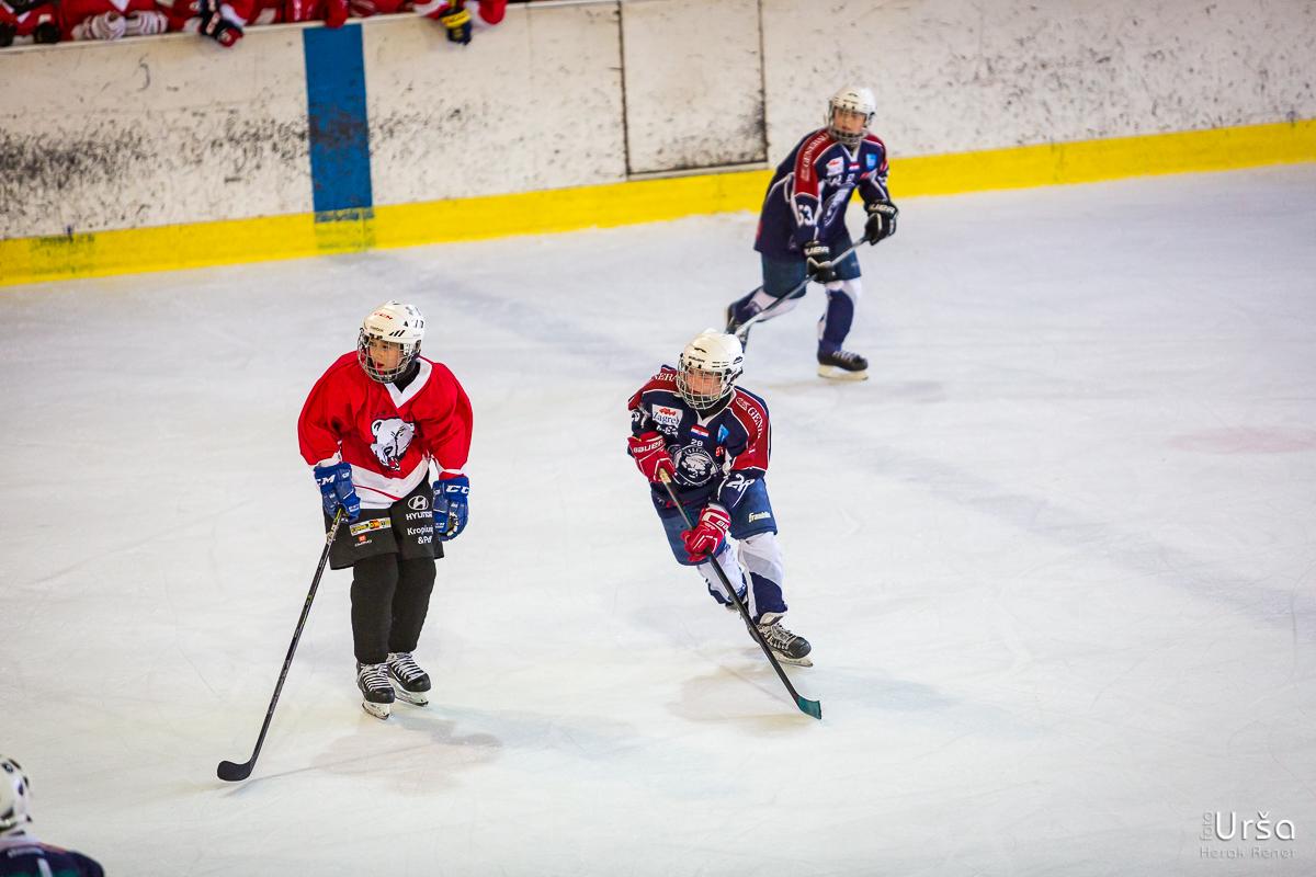 Mednarodni turnir U12 in U14, Bled 2016