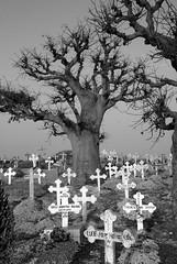 isola delle conchiglie cimitero misto
