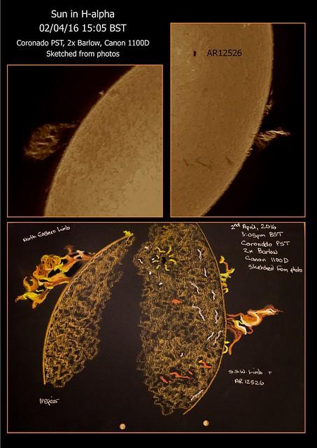 Sun in H-alpha Prominence Photos & Sketches 02/04/16