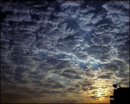 morning sky sun india silhouette sunrise canon landscape 100v10f chennai specsky impressedbeauty