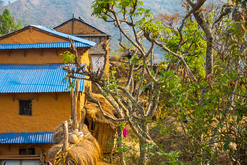 nepal np westernregion jaubari