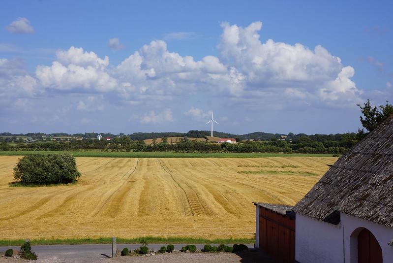 Tjoernbjerg-Marker-2013 (13)
