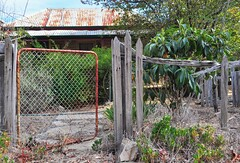 A good fence, for Friday