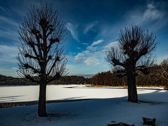 Winterwonderland Moritzburg near Dresden (Flickr Explore)
