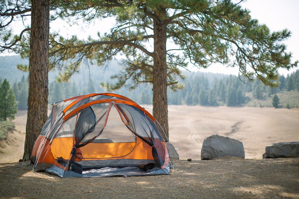 Camp Vibes
